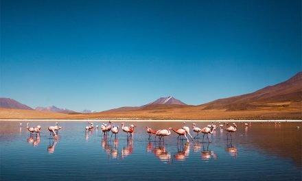 Mon top 5 des sites visités en Amérique du Sud