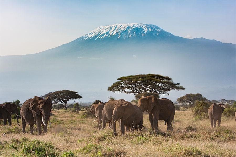 Avant de voyager en Tanzanie, voici mes cinq précieux conseils